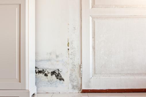 immobilier travaux l 39 humidit dans la maison des solutions existent immobilier travaux. Black Bedroom Furniture Sets. Home Design Ideas